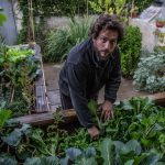 גידול ירקות בגינה ביתית